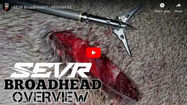 Sevr Broadhead review
