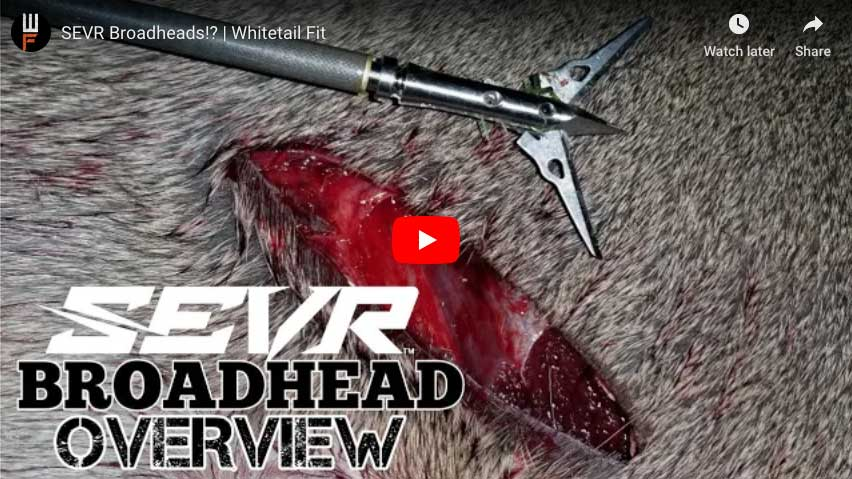 Sevr Broadhead Review From Whitetail Fit